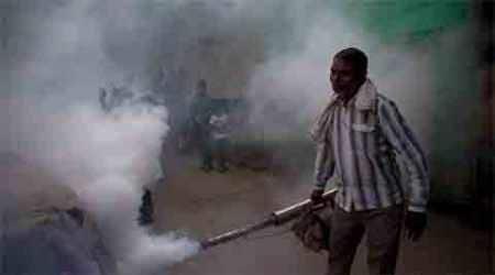 pest control, pest, pesticides, pesticides death, Pune pesticides death, indian express