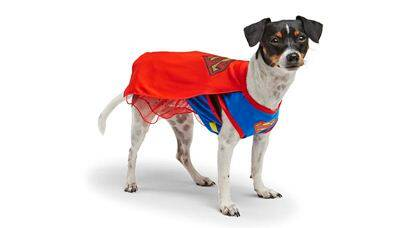 This 2015 photo provided by PetSmart shows a dog in a Supergirl costume for Halloween. The pet costume industry has come of age. Excluding pet stores, retailers have only just begun to look at pet costumes as a trend. And to put it mildly, business is booming.(PetSmart via AP)