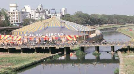 Rambo Circus may not get Mutha river nod