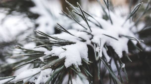 Amazing pictures of the world covered in white this winter