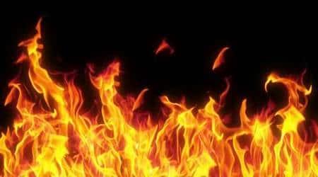 Odisha man who set himself on fire dies