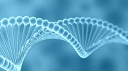 These 30 genes hold the clue to a longer, healthierlife
