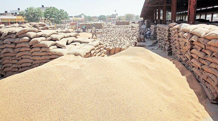 India has maintained that it must have the freedom to use its food reserves to feed its poor without the threat of violating international obligations. (Express Photo by: Sumit Malhotra)