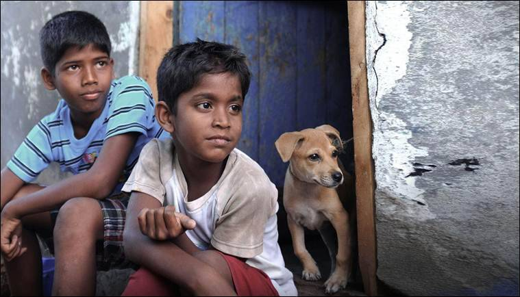 Kaaka Muttai, Kaaka Muttai movie