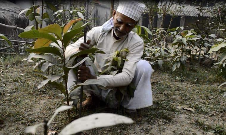 Basti village, climate change, india climate change, global warming, deforestation, india news