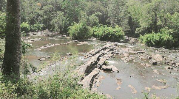 A river runs through it: The Chalakudy river keeps trekkers company along the length of the trail