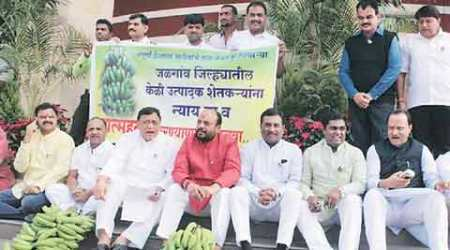 Maha govt against issuing ordinance for Muslim quota ineducation