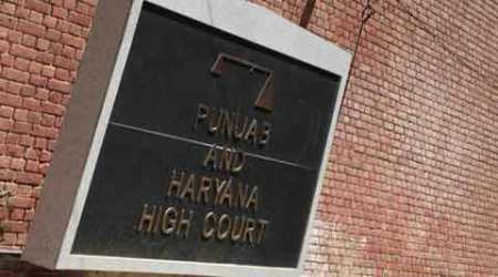 Sapna Chaudhary, haryanvi singer, punjab and haryana high court, punjab haryana hc, bail rejected, interim bail reject, india express news, india news