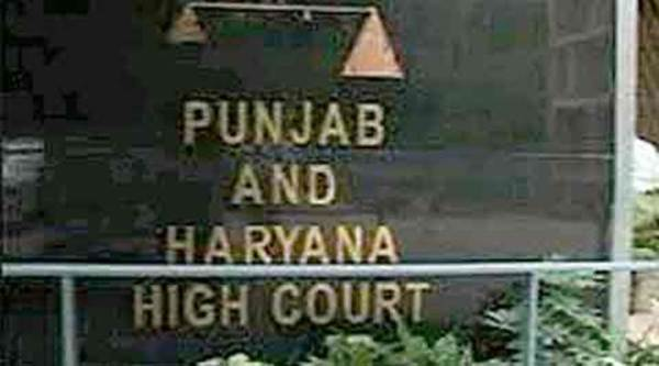 haryana high court, haryana HC, panjab university, panjab university senator, PU elections, Panjab university news, chandigarh news