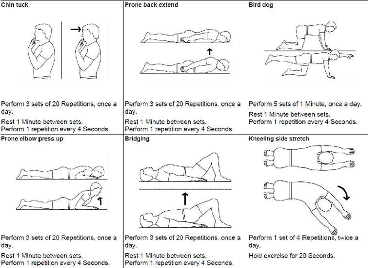 Spine Alignment Exercises Pictures To Pin On Pinterest
