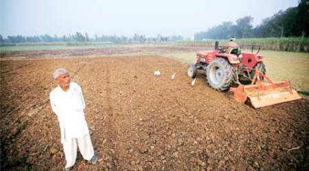 Bombay HC seeks state govt report on farmer suicides