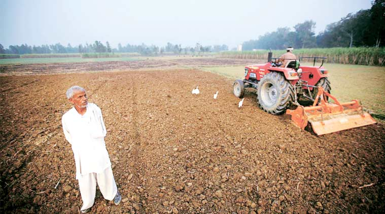 A farmer near Bijnor prepares his field for sowing wheat. (Express Photo by: Praveen Khanna)
