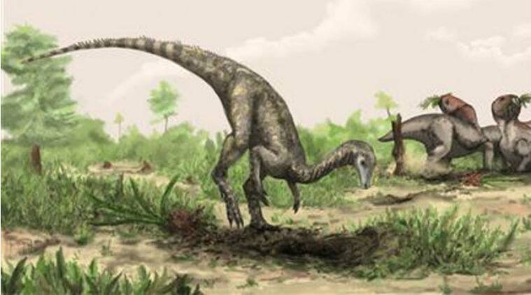 dinosaurs, dinosaurs sex, dinosaurs wooing mates, dinosaurs foreplay, Queen Mary University of London, dinosaurs facts, dinosaurs sexual displays, technology, technology news