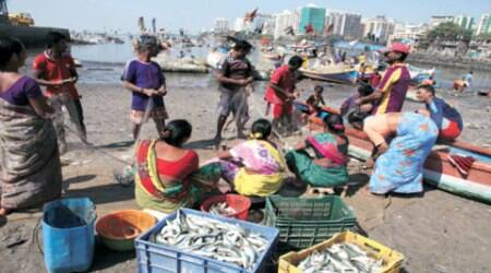 Melting pot: This fishing community  stands witness to the changing tides in business