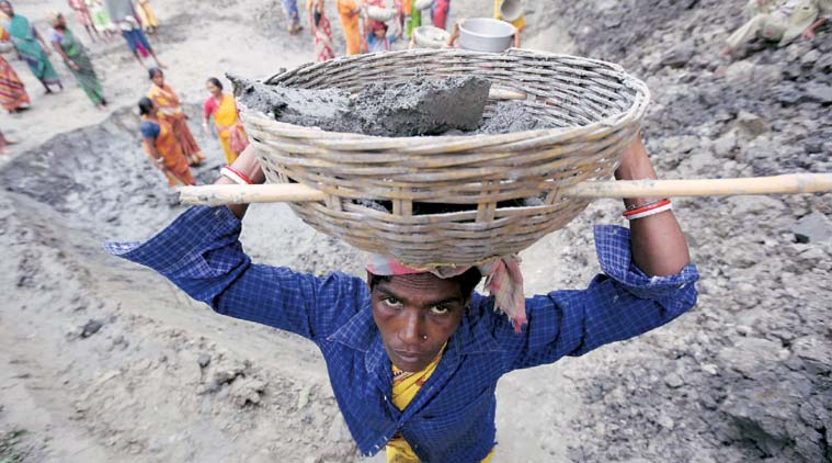 Villagers engaged in a MGNREGA project in West Bengal. Despite the PM dismissing MGNREGA as a monument of UPA's failure, July-September and October-December have seen a turnaround.    (Express Photo by: Subham Dutta)