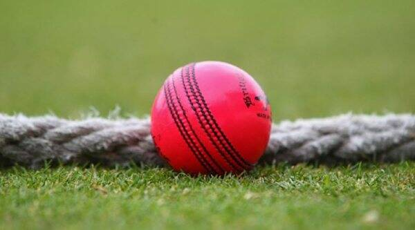pink ball, pink ball cricket, pink ball visibility, cricket australia, pink ball tests, pink ball australia, australia cricket, cricket scores, cricket news, cricket updates, cricket