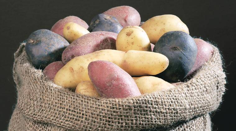 sweet potato diet, sweet potato benefits, health news, health and fitness, lifestyle news, sweet potato health, india news