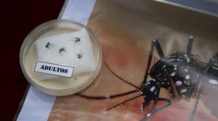 Govt forms group to monitor Zika