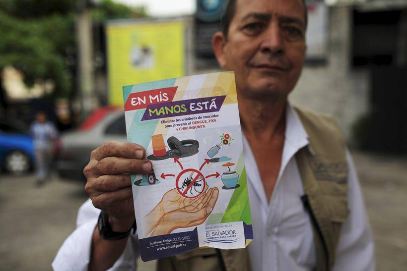 zika, zika virus, zika emergency, WHO zika meeting, WHO zika emergency, zika outbreak, Microcephaly zika, zika symptoms, zika vaccine, zika cure, zika spread, zika news, world news, health news, latest news