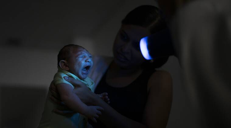 zika, zika virus, Zika global emergency, WHO Zika global emergency, Zika virus outbreak, Zika virus threat, Zika virus spread, zika asia, zika Asian countries, Latin America, zika Latin America, world news, zika news
