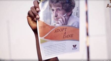 Satirical Adopt-A-Dane Foundation video seeks Africans to rescue Denmark's old