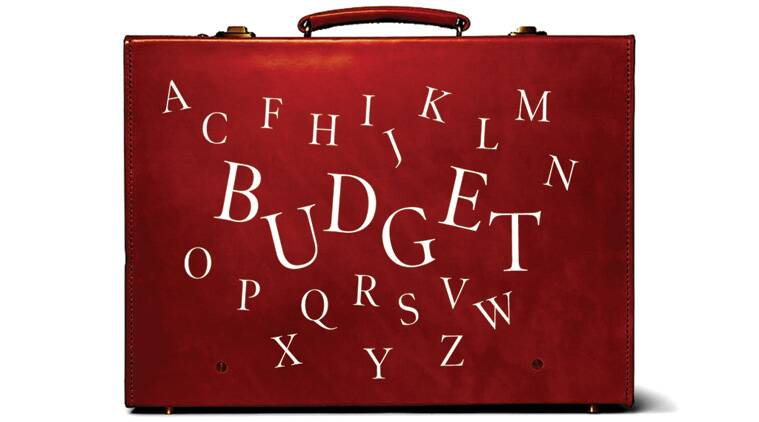 Budget2016, union budget 2016, employment generation, employment opportunities, india GDP, GDP, india GDP growth, 2016-17 budget , RBI, RBI Act, FDI, Kelkar Committee, highlights of union budget 2016, indian express editorial page, indian express