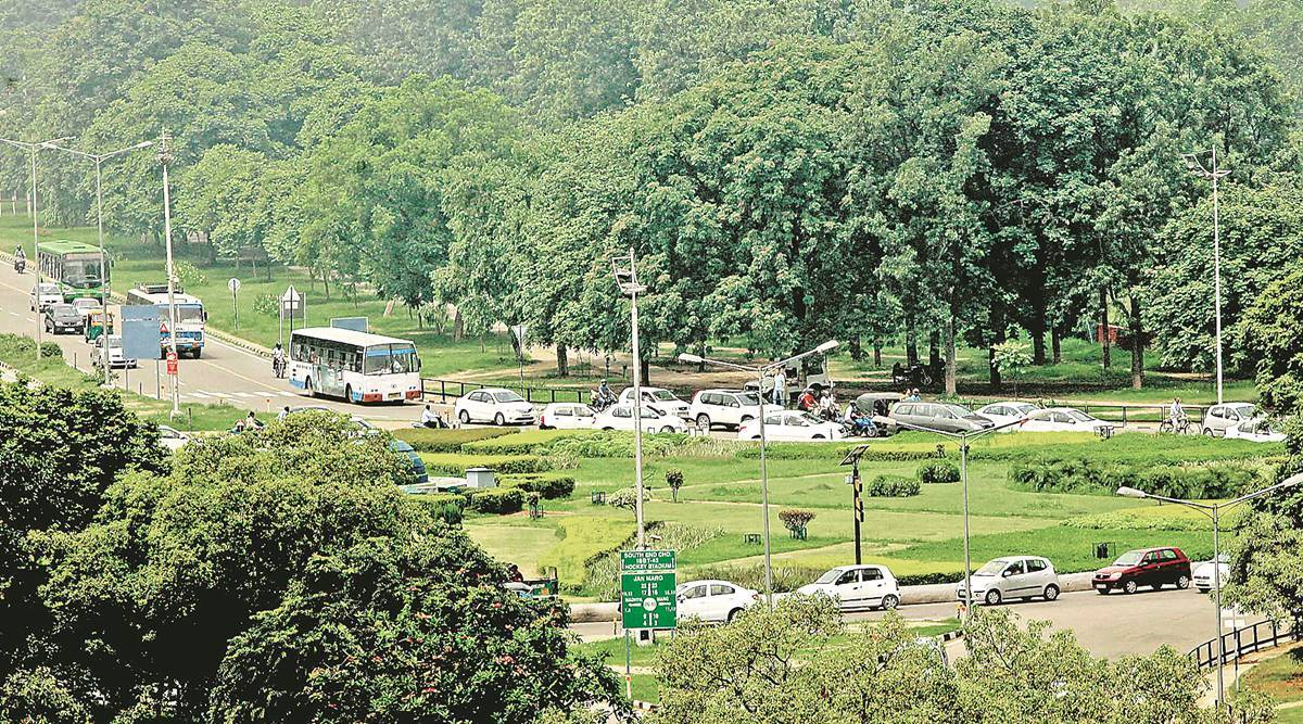 Chandigarh: Shovels and saplings in hand, green group works on giving Sector 17's neglected terraced beds a facelift