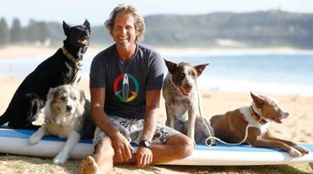 These Australian dogs chase waves, not cats