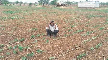 farming, farming sector, maharashtra gvot, fadnavis govt, agriculture sector, maharashtra farmers, mumbai news