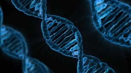 Genetic link found between type 2 diabetes and mental disorders