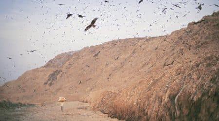 Delhi wastelands: 50 feet tall and growing, Ghazipur yard operates well beyonddeadline