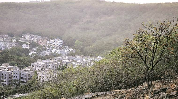 Forest department decides to put up wall around forest land in the district