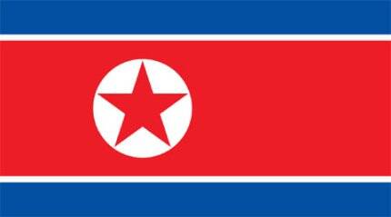 N Korea's army chief of staff executed: report