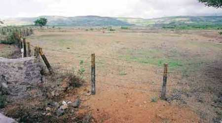 Pune: State Revenue Dept to revise land rates to educational institutions, charitable bodies