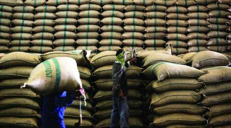 Farm support: Paddy MSP hiked by Rs 80/quintal, pulses by up to Rs 400/quintal