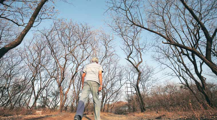 Forest officials allege that of the 15,000 hectares of land, around 11,349 hectares seem to have been given to individual beneficiaries while the rest has fallen prey to huge encroachments.