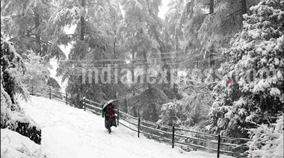 Snowfall, Snow, Heavy Snowfall, Snowfall in Shimla, Snowfall in Himachal, Heavy Snowfall in Shimla, First Snowfall of Season, Snowfall in Shimla pics
