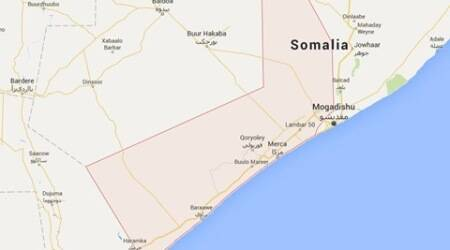Islamist Shebab fighters seize Somali port: Governor