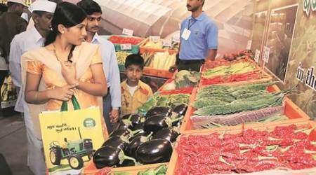 Farmer's producer companies to take lead in veg exports