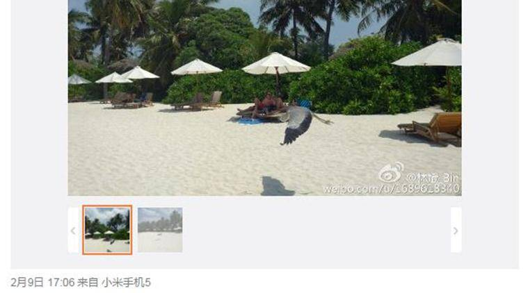 The camera samples posted on Weibo by Xiaomi President clearly indicate that they are shot with Mi 5 smartphone (Source: Lin Bin/Weibo)