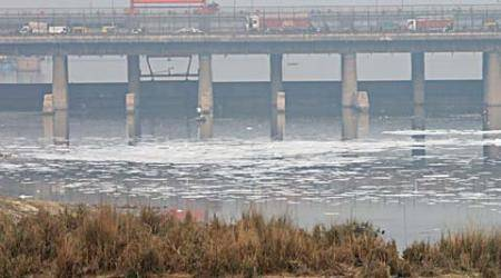 Delhi: Water supply hit after spike in Yamuna ammonialevels