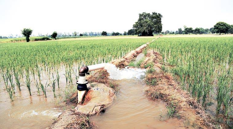 agriculture water, water, water use, irrigation, fresh water, fresh water supply, industrialisation, urbanisation, arun jaitley, Pradhan Mantri Krishi Sinchayee Yojana, nabard, indian express news