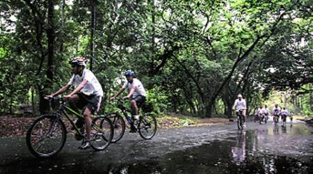 Tourist Spot: Cycling along the city's green lung a popular sport for tourists,residents