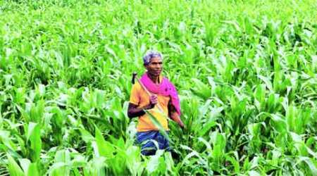 Across the aisle- Dear farmers: Achhe din are coming