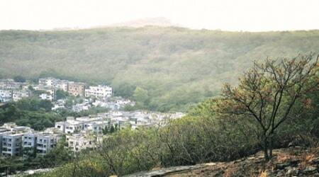 tribal forest, tribal forest land, community forest, village forest, pune news