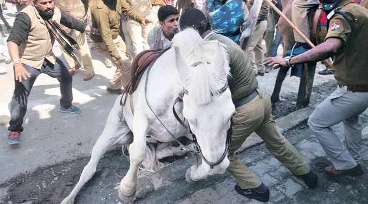 Shaktiman was attacked by BJP protesters in Dehradun on Monday. As she backed away, one of her hind legs was caught in a railing. (Source: PTI)