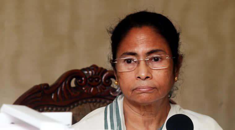 bengal election, mamata banerjee, CM mamata banerjee, BJP, TMC, bengal news
