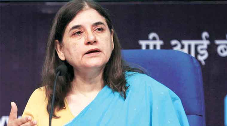maneka gandhi, ducklings die in chandigarh, maneka gandhi news, india news, indian express,