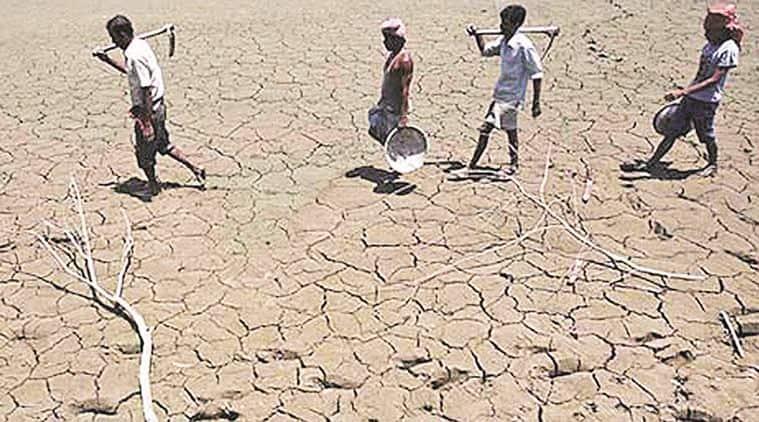 marathawada, marathawada farmer, marathawada suicide, farmer suicides, marathawada suicides, maharashtra farmer suicide, maharashtra news, india news