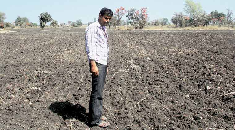 An opium farmer whose crop has been ploughed back into his field using rotavator. (Express Photo: Milind Ghatwai)